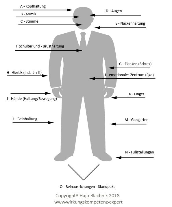 Wirkungskompetenz durch Stimme und Körpersprache - Hajo Blachnik